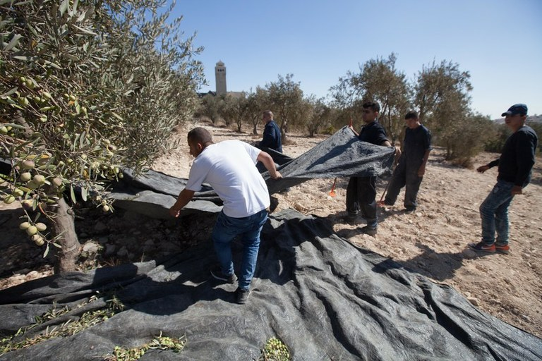 Holy Land tourism goes beyond traditional paths