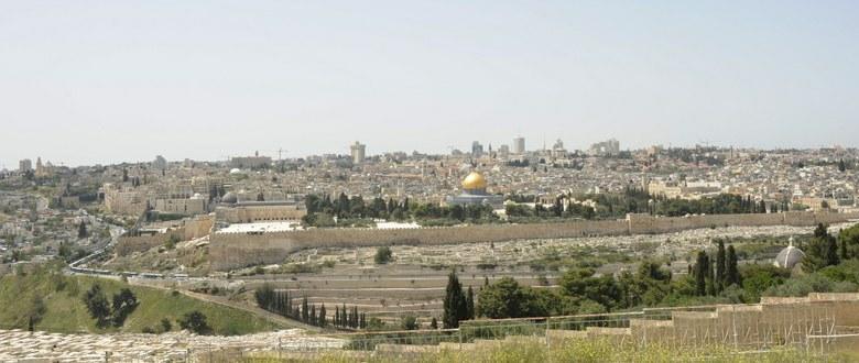 World Week for Peace in Palestine Israel